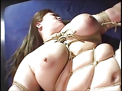 Asian BBW Menial damaged